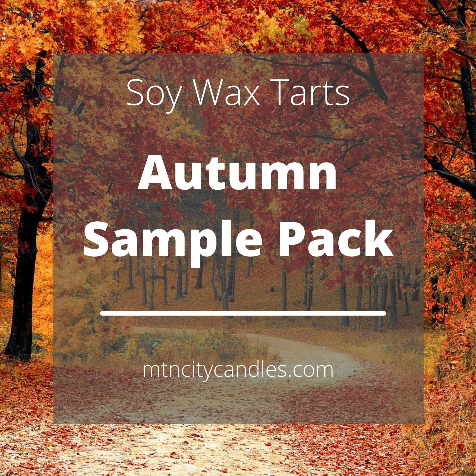 Soy Wax Tart - Autumn Sample Pack